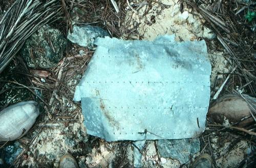 Artefato encontrado na ilha - Foto Discovery News